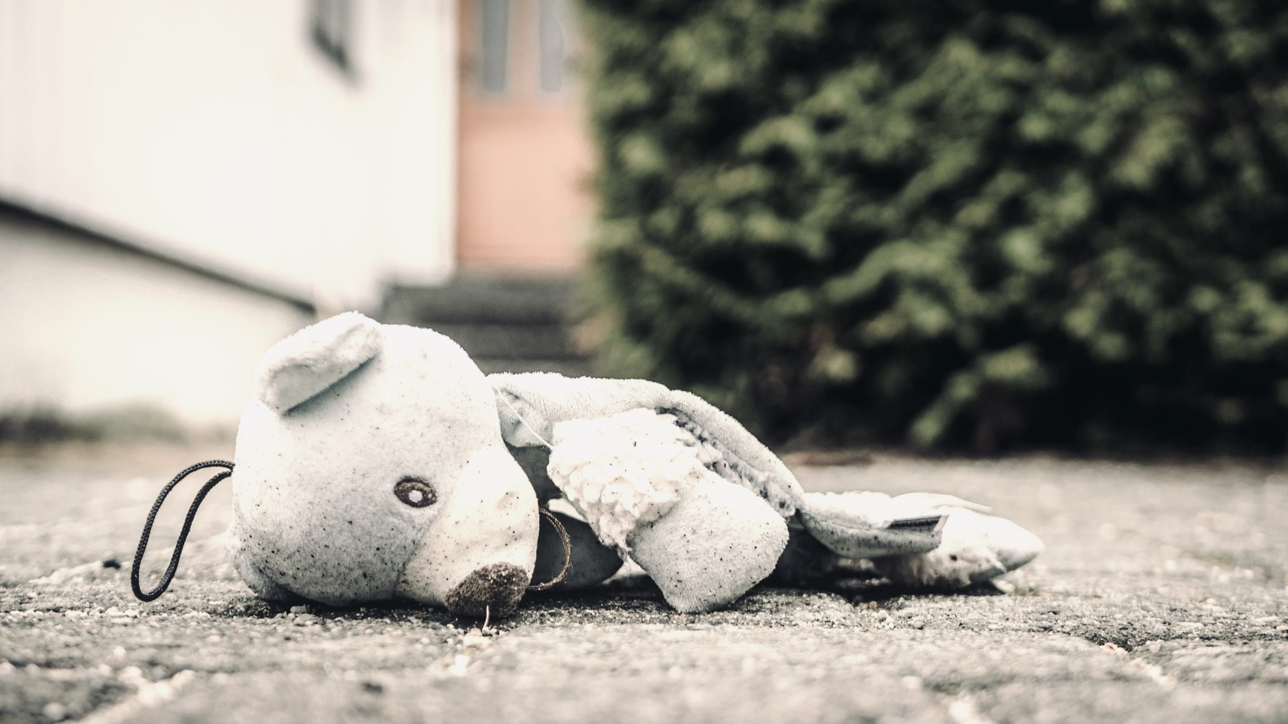 Broken teddy bear