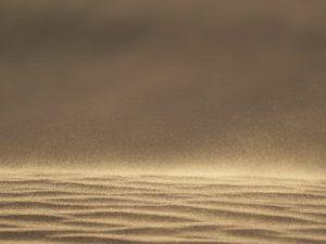 Baile de arena, las señales