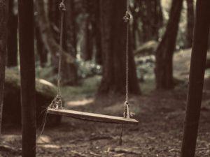 Old swing, Parque natural de Sintra Cascais, Sintra, Portugal