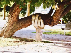 Tree and hands : When you need that helping hand!
