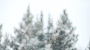 Snow scene; Big Sky Resort Road, Gallatin Gateway, United States